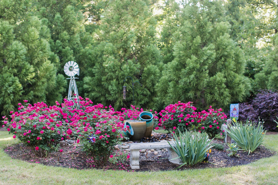 Garden Gate Dental's Garden